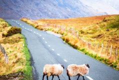 Partez à la découverte de l'Irlande avec Voyage Privé