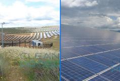 Clean Progress possède une longue expérience en matière de nettoyage de champs photovoltaïques